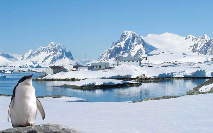 Антарктика: Русское Золото